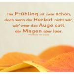 Herbstlaub mit von Logau Zitate Bilder: Der Frühling ist zwar schön; doch wenn der Herbst nicht wär', wär' zwar das Auge satt, der Magen aber leer. Friedrich von Logau