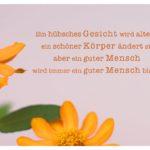 Blüten mit Sprüche Bilder: Ein hübsches Gesicht wird altern, ein schöner Körper ändert sich, aber ein guter Mensch wird immer ein guter Mensch bleiben.