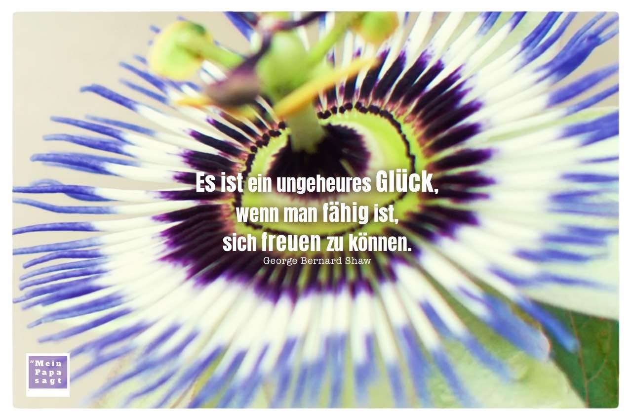 Passionsblume mit Shaw Zitate Bilder: Es ist ein ungeheures Glück, wenn man fähig ist, sich freuen zu können. George Bernard Shaw