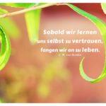 Blätter einer Weide mit Goethe Zitate Bilder: Sobald wir lernen uns selbst zu vertrauen, fangen wir an zu leben. J. W. von Goethe