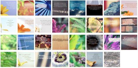 Übersichtsbild - Bilder Galerie mit Lebensweisheiten, Weisheiten, Zitate Bilder, Sprichwörter, Affirmationen und Sprüche Bilder des Tages Oktober 2020