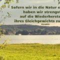 Beitragsbild - Sofern wir in die Natur eingreifen, haben wir strengstens auf die Wiederherstellung ihres Gleichgewichts zu achten