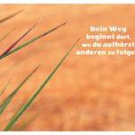 Gräser vor Holz mit Sprüche Bilder: Dein Weg beginnt dort, wo du aufhörst anderen zu folgen.