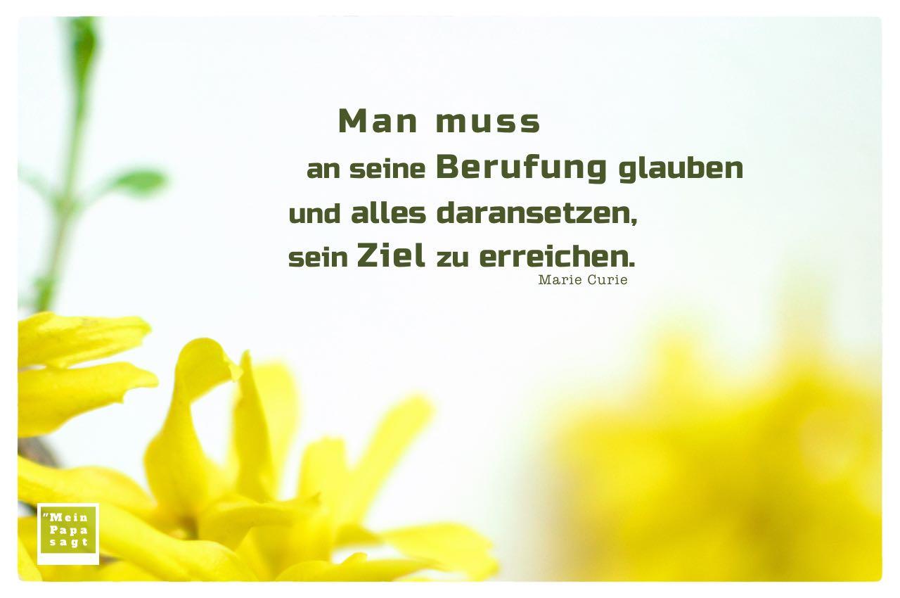 Blüten Strauch mit Curie Zitate Bilder: Man muss an seine Berufung glauben und alles daransetzen, sein Ziel zu erreichen. Marie Curie