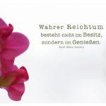 Blüten mit Emerson Zitate Bilder: Wahrer Reichtum besteht nicht im Besitz, sondern im Genießen. Ralph Waldo Emerson