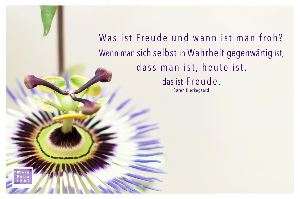 Passionsblume mit Kierkegaard Zitate Bilder: Was ist Freude und wann ist man froh? Wenn man sich selbst in Wahrheit gegenwärtig ist, dass man ist, heute ist, das ist Freude. Søren Kierkegaard