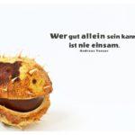 Kastanie mit Tenzer Zitate Bilder: Wer gut allein sein kann, ist nie einsam. Andreas Tenzer