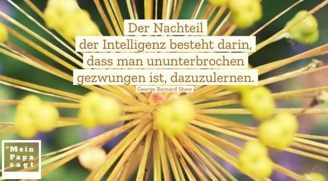 Der Nachteil der Intelligenz besteht darin, dass man ununterbrochen gezwungen ist, dazuzulernen – George Bernard Shaw
