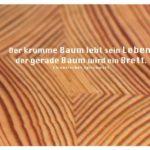 Brett mit chinesischen Sprichwörtern und Bildern: Der krumme Baum lebt sein Leben, der gerade Baum wird ein Brett. Chinesisches Sprichwort