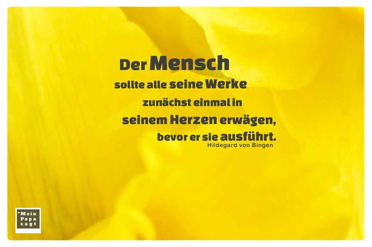 Blütenblätter mit von Bingen Zitate Bilder: Der Mensch sollte alle seine Werke zunächst einmal in seinem Herzen erwägen, bevor er sie ausführt. Hildegard von Bingen