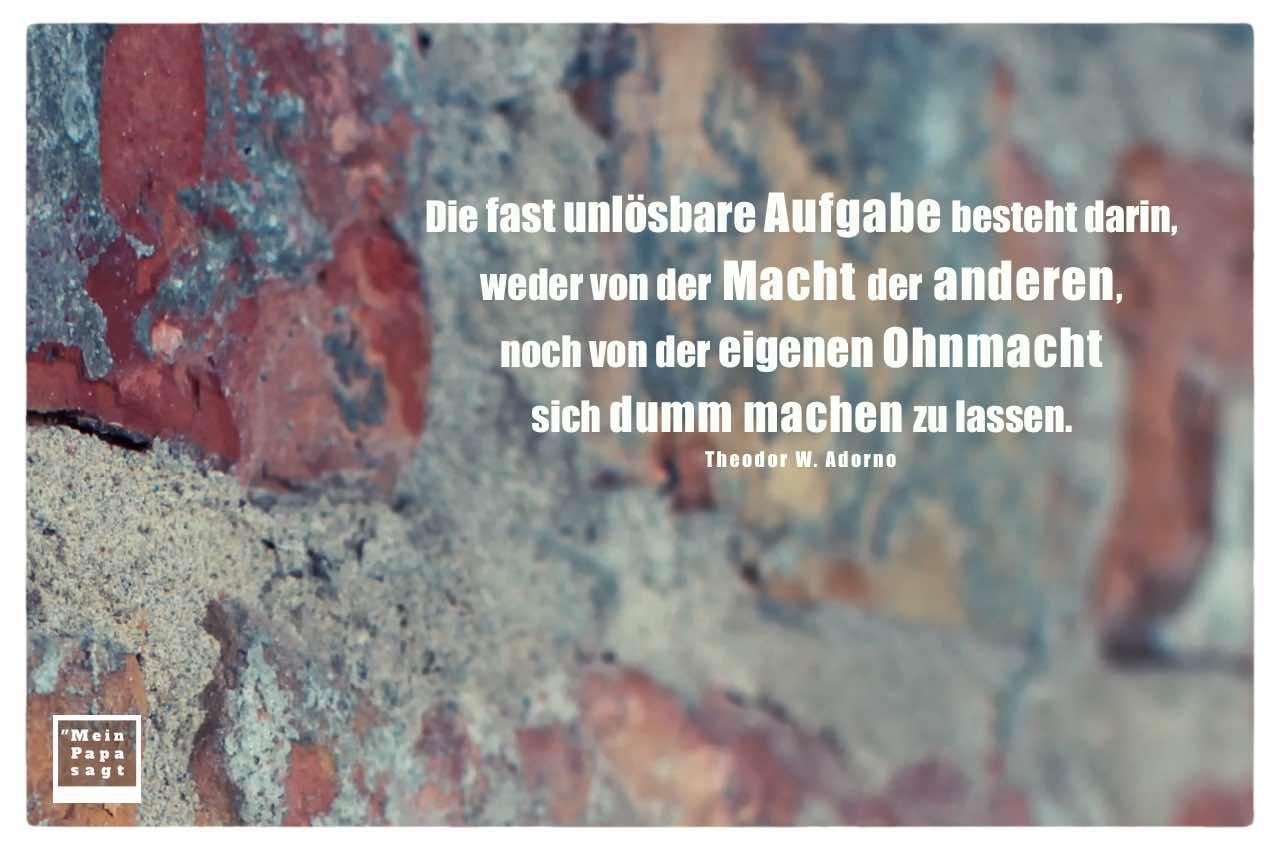 Alte Steinmauer mit Adorno Zitate Bilder: Die fast unlösbare Aufgabe besteht darin, weder von der Macht der anderen, noch von der eigenen Ohnmacht sich dumm machen zu lassen. Theodor W. Adorno