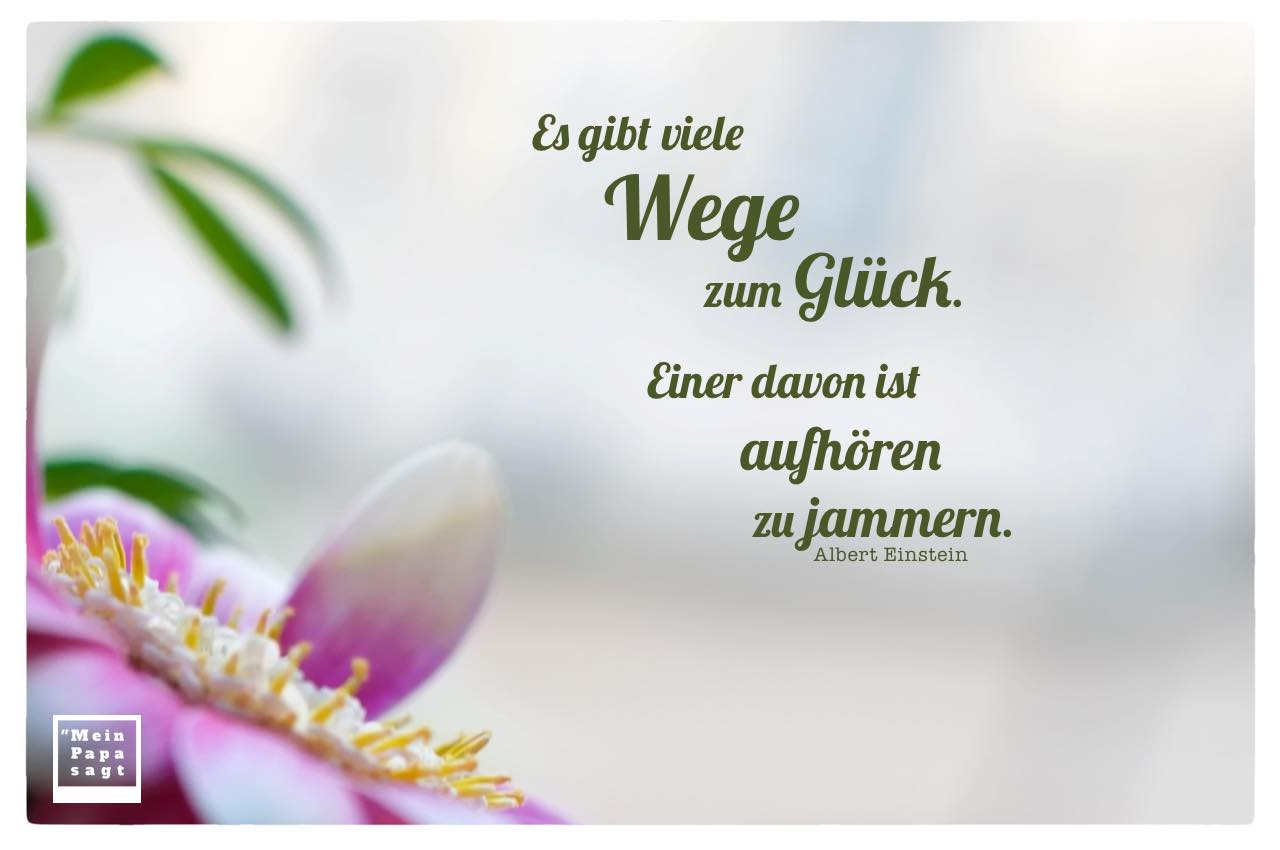 Blütenkelch mit Einstein Zitate Bilder: Es gibt viele Wege zum Glück. Einer davon ist aufhören zu jammern. Albert Einstein