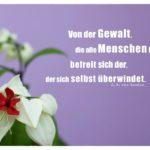 Blüte mit Goethe Zitate Bilder: Von der Gewalt, die alle Menschen bindet, befreit sich der, der sich selbst überwindet. J. W. von Goethe