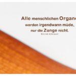 getrocknetes Palmenblatt mit Adenauer Zitate Bilder: Alle menschlichen Organe werden irgendwann müde, nur die Zunge nicht. Konrad Adenauer