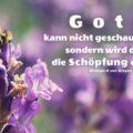 Gott kann nicht geschaut werden, sondern wird durch die Schöpfung erkannt - Hildegard von Bingen