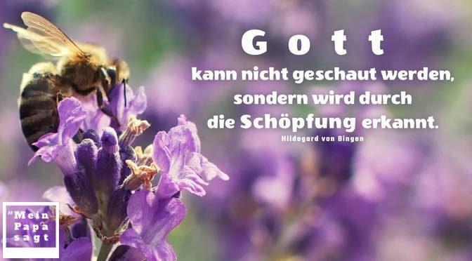 Gott kann nicht geschaut werden, sondern wird durch die Schöpfung erkannt – Hildegard von Bingen