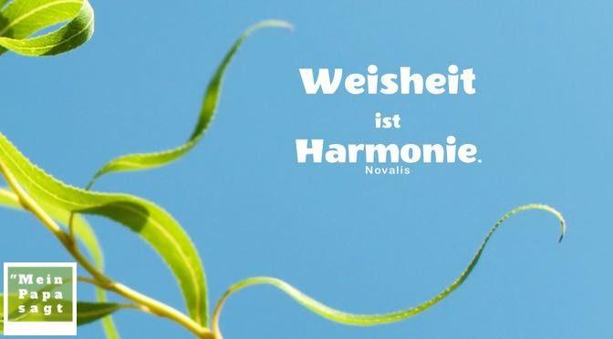 Weisheit ist Harmonie – Novalis – Zitate Bilder