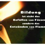 Kerzen Flamme mit Mein Papa sagt Heraklit Zitate Bilder: Bildung ist nicht das Befüllen von Fässern, sondern das Entzünden von Flammen. Heraklit