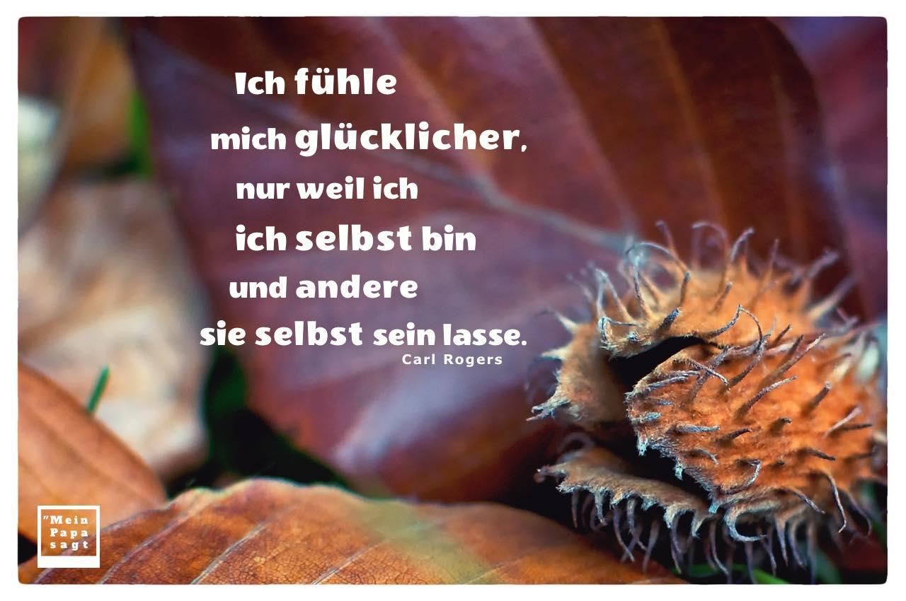 Herbstlaub und Buchecker mit Rogers Zitate Bilder: Ich fühle mich glücklicher, nur weil ich ich selbst bin und andere sie selbst sein lasse. Carl Rogers