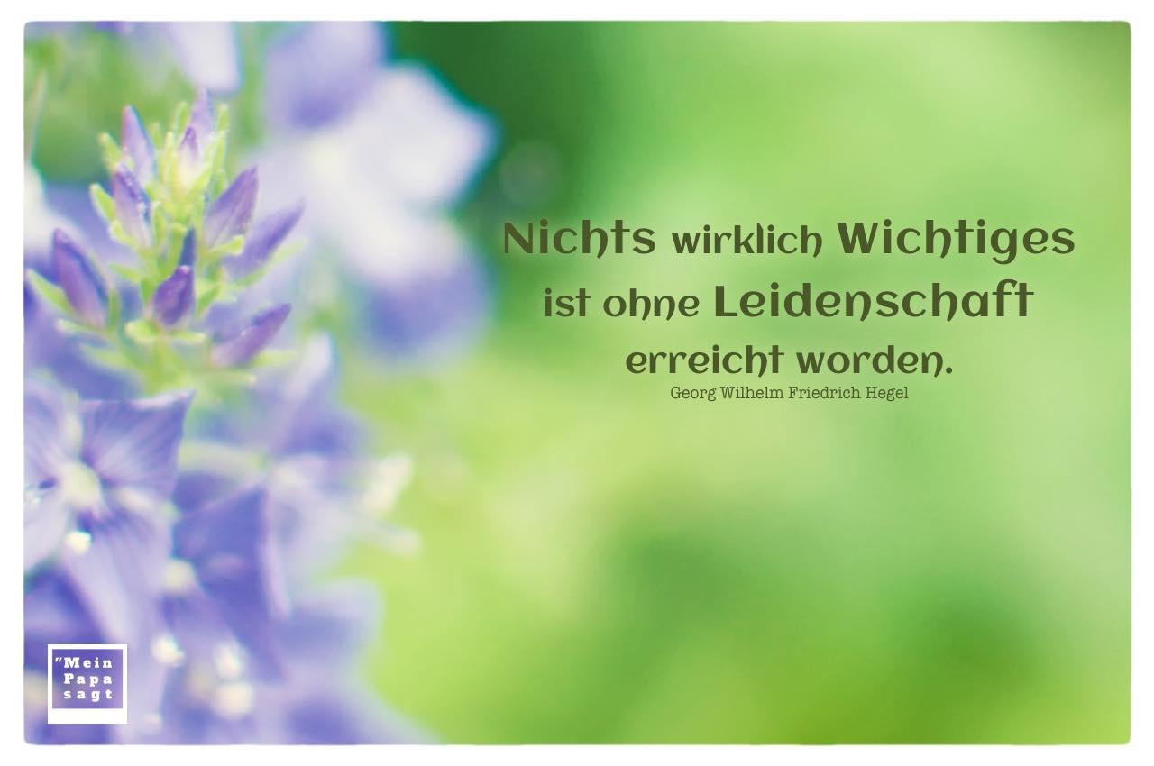 Blüten mit Hegel Zitate Bilder: Nichts wirklich Wichtiges ist ohne Leidenschaft erreicht worden. Georg Wilhelm Friedrich Hegel