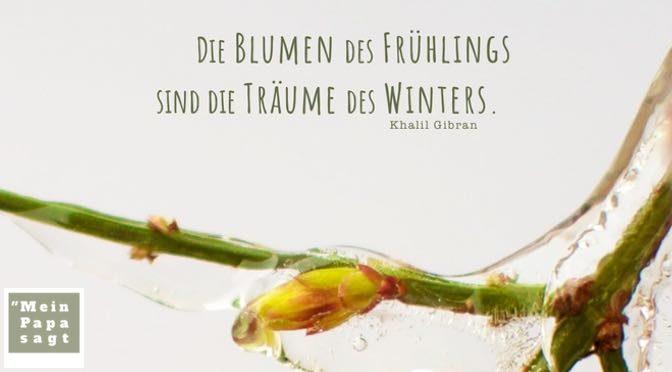 Die Blumen des Frühlings sind die Träume des Winters – Khalil Gibran
