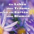 Ein Leben ohne Träume ist wie ein Garten ohne Blumen