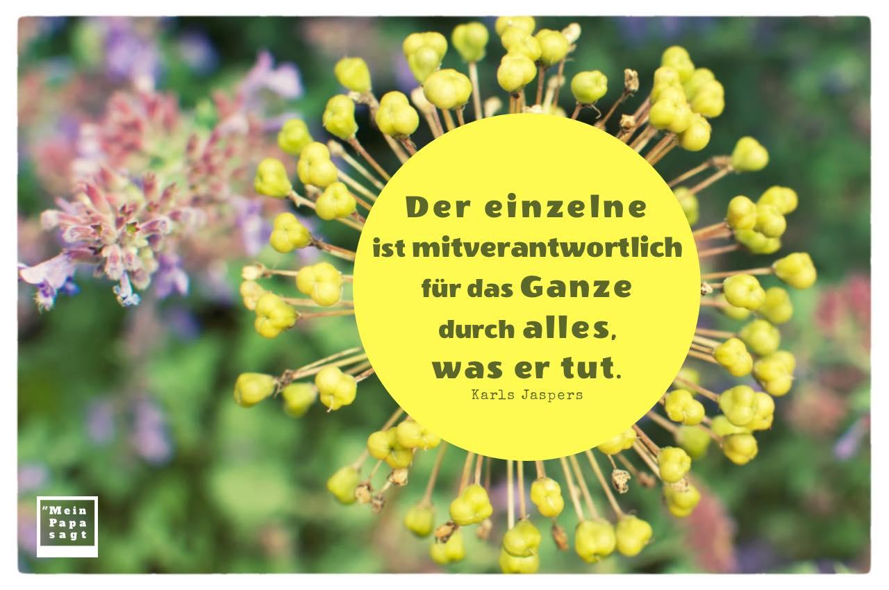 Blüten mit Mein Papa sagt Jaspers Zitate Bilder: Der einzelne ist mitverantwortlich für das Ganze durch alles, was er tut. Karls Jaspers