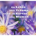 Lila Blüten mit Sprüche Bilder: Ein Leben ohne Träume ist wie ein Garten ohne Blumen.