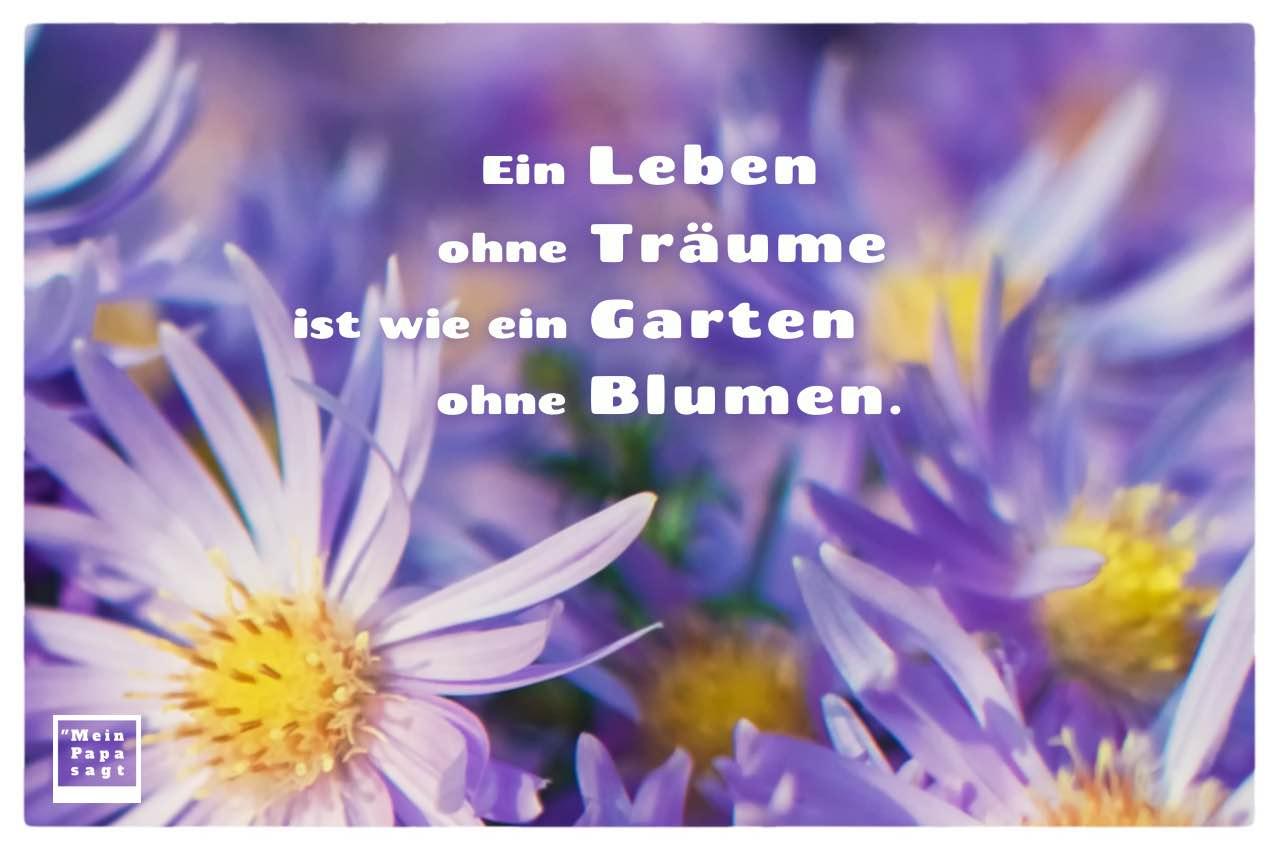 Lila Blüten mit Mein Papa sagt Sprüche Bilder: Ein Leben ohne Träume ist wie ein Garten ohne Blumen.