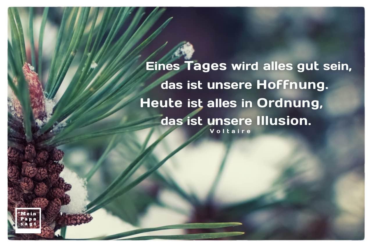 Kleine Tannenzapfen im Schnee mit Mein Papa sagt Voltaire Zitate Bilder: Eines Tages wird alles gut sein, das ist unsere Hoffnung. Heute ist alles in Ordnung, das ist unsere Illusion. Voltaire