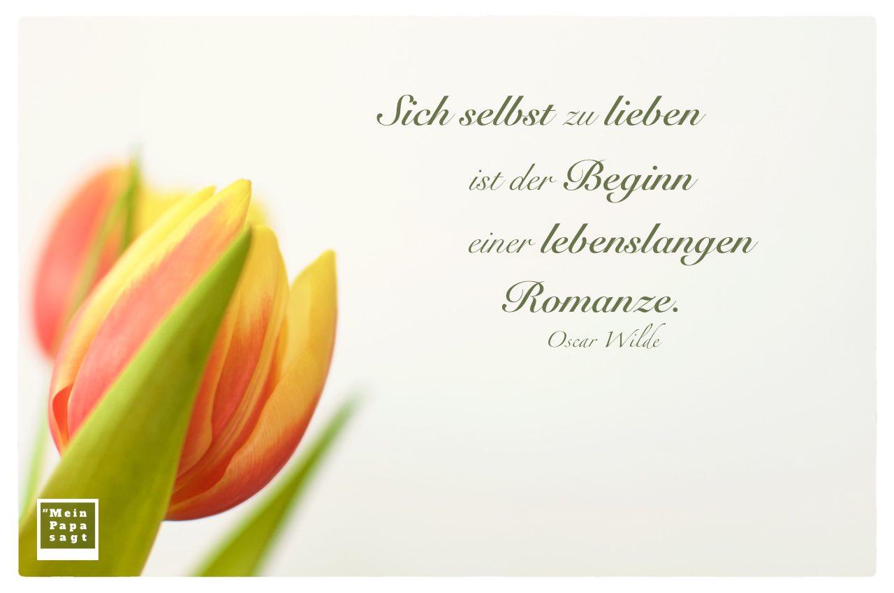 Tulpen mit Mein Papa sagt Wilde Zitate Bilder: Sich selbst zu lieben ist der Beginn einer lebenslangen Romanze. Oscar Wilde